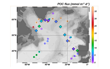 Important spatial variation of the Particulate Organic Carbon export along the GEOVIDE section in the North Atlantic Ocean