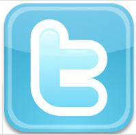 Twitter icon web